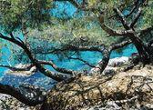 Feriehus Provence - lækre feriboliger og ferielejligheder